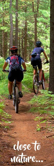 mountina-biking-inthe-knysna-forest